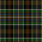 02347 Bronx County, New York District Tartan Fabric Print Iphone Case by Detnecs2013