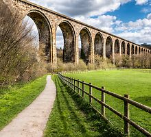 Cefn Viaduct  by Adrian Evans