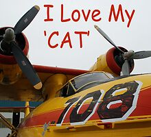 I Love My Cat by mark alan perry