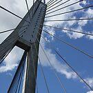 ANZAC Bridge, Sydney, Australia by aussiebushstick