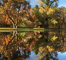 Sycamore Pool Reflections by James Eddy
