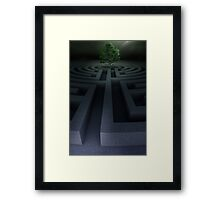 Tree into the maze Framed Print