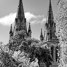 St Peters Cathedral Adelaide by Nick Egglington