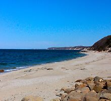 The Rocky Shore (Wild Wood State Park) by RogerEchauri