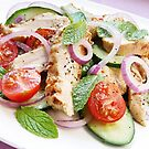 Chicken Cucumber and Mint Salad by Franz Diegruber