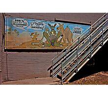 Aussie Critters Stairway Photographic Print
