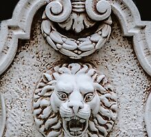 Lion On The Wall by heatherfriedman
