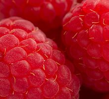 Raspberry by JaSphotography