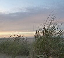 Holkham beach Norfolk by Sue Ashton