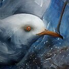 Seagull eye by Sue Ashton