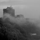 Niagara Falls Misty City by Barry W  King