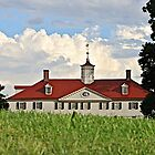 Mount Vernon by John Butler