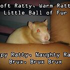 Soft Ratty, Warm Ratty by Wizadora Wilkinson