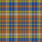 02349 Nassau County, New York District Tartan Fabric Print Iphone Case by Detnecs2013