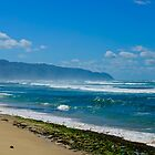 Rugged shore Oahu Hawaii by raymona pooler