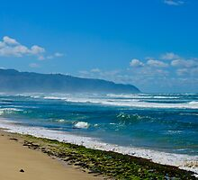 Rugged shore Oahu Hawaii by raymona pooler