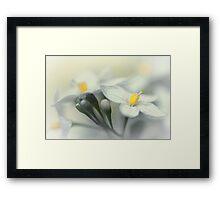 Fading flowers... Framed Print