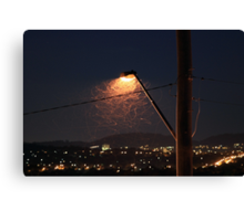 Insects under the streetlight Canvas Print