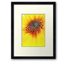 How Hot Is The Sun?? Framed Print