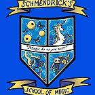 Schmendrick's School of Magic by AriesNamarie