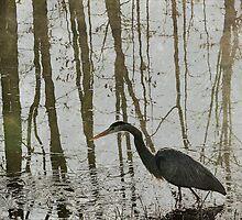 Reflection on the Hunt by MichelleAyn