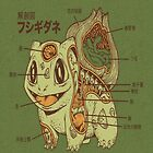 Japanese Anatomy Of A Pokemon Bulbasaur by cupcakewaffles