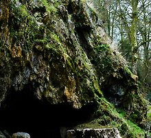 Mossy cave by JoeyKleisinger