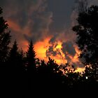 Firey Sky by Dlouise