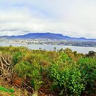 Hobart Panorama by Terry Everson