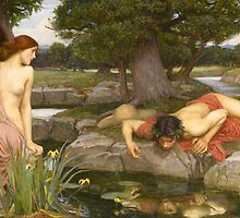 John William Waterhouse - Echo and Narcissus by TilenHrovatic