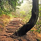 stairway to heaven by Atman Victor