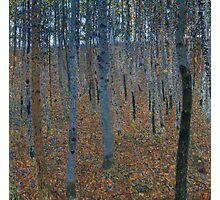Gustav Klimt - Beech Grove I Photographic Print