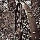 """Steel Wheel"" by frogwithwings"