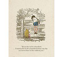 Winnie the Pooh & Friends Photographic Print