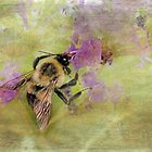 The Beauty of Nature At Work by Susan Werby