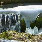 Canterbury cascade by shireengol