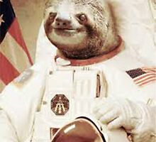 Astronaut Sloth by Alex & Marco Mitolo