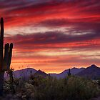 Red Hot Sonoran Sunset by Saija  Lehtonen