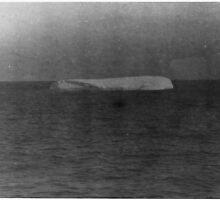 A Photograph of an Iceberg Floating Near the Site of the TITANIC Sinking by TilenHrovatic