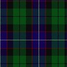 10013 Mitchell Clan/Family Tartan Fabric Print Ipad Case by Detnecs2013