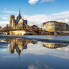 Notre Dame de Paris by Muriel Auvray