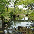 Japanese Water Garden by DarthIndy