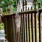 Cemetary Fence by Mike Oliver