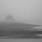 Elephant and baby in the mist by Christopher Cullen