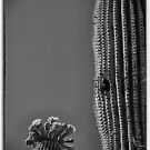 Saguaro in Bloom - V1 by Judi FitzPatrick