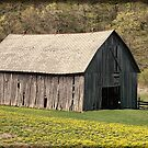 Southwest Wisconsin Barn by Thomas Young