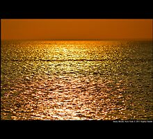 Long Island Sound Golden Horizon - Stony Brook, New York by © Sophie W. Smith