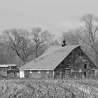 An Iowa Barn 2 by Jean Martin