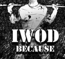 IWOD because ICAN Sticker