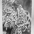Leopard by EmilyLouiseLong